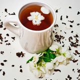 Tea cup and dried and fresh fragrant Jasmine flowers Royalty Free Stock Photos