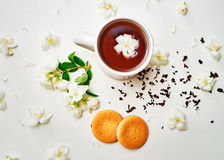 Tea cup with dried and fresh Jasmine flower and biscuits stock images