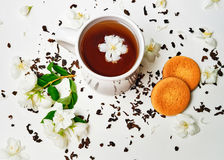 Tea cup with dried and fresh Jasmine flowers and biscuits Stock Images