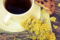 Tea cup with dry flowers Royalty Free Stock Image