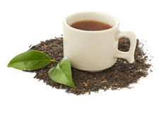 Tea in a cup and dry leaves Royalty Free Stock Photos