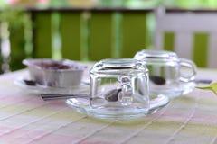 Tea cup empty. Ready input hot tea cup Stock Image