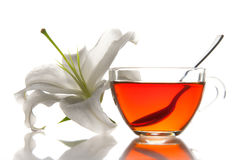Tea cup and flower Stock Image