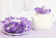 Tea cup in flowers Stock Images