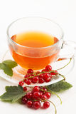 Tea in cup and fresh red currant Royalty Free Stock Images