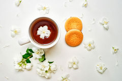 Tea cup with Jasmine flowers and biscuits on white background Royalty Free Stock Photo