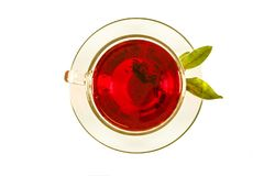 Tea in a cup with a leaf of mint isolated on white background. View from above. Tea in a cup with a leaf of mint isolated on white background. View from above stock images