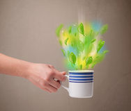 Tea cup with leaves and colorful abstract lights Royalty Free Stock Images