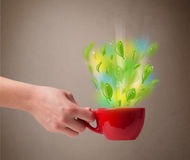 Tea cup with leaves and colorful abstract lights. Close up Stock Image