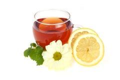 Tea cup and lemon. Tea time - cup of tea and lemon Stock Images