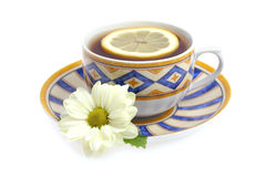 Tea cup and lemon. On white background stock images