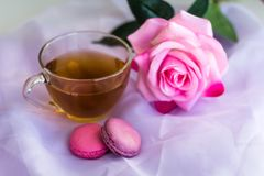 Tea cup and macaroons. On the table with blurred rose stock image