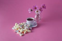 Tea cup with marshmallow Stock Photos