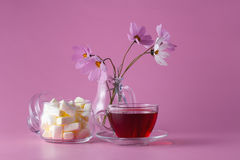 Tea cup with marshmallow Royalty Free Stock Photos