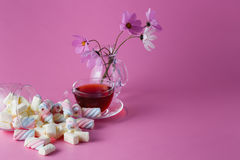 Tea cup with marshmallow Royalty Free Stock Photography