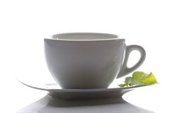 Tea cup and a mint leaf Stock Images