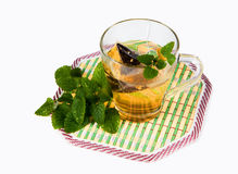 Tea cup with mint leaves Stock Image