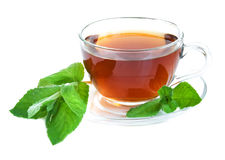 Tea cup with mint leaves Stock Photos
