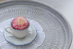 Tea cup with pink ranunculus in it Stock Images