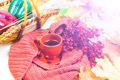 Tea Cup, red plaid, vegetables in a wicker basket, red Apple, green bell pepper, autumn maple leaves on a light wood background. S. Till life Royalty Free Stock Photography