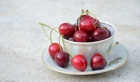 Tea cup of ripe cherries Royalty Free Stock Images
