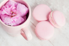 Tea cup with rose and macaroons, selective focus Royalty Free Stock Photography