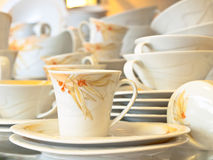 Tea cup and the service Royalty Free Stock Photography