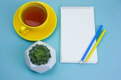 Tea cup, succulent, notebook and pencils. On a blue background royalty free stock photo