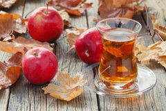 Tea cup on table with fall harvest Royalty Free Stock Image