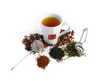 Tea cup with tea. And various herbs Stock Photos