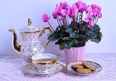 Tea cup and teapot on pink tablecloth Royalty Free Stock Photography