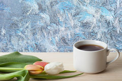 Tea cup with tulips on the wooden table opposite beautiful natur Stock Image