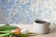 Tea cup with tulips on the wooden table opposite beautiful natur Stock Images