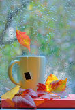 Tea cup at the window with  leaves and drops Stock Images
