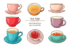 Tea cups set color. Tea cups vector set on white  background Royalty Free Stock Image
