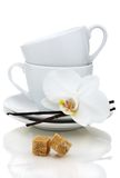 Tea cups, sugar and vanilla. Royalty Free Stock Photography