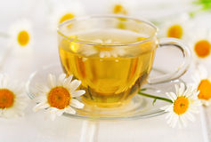 Tea with daisy flower Royalty Free Stock Photography