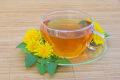 Tea dandelion Royalty Free Stock Photo