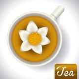 Tea design Royalty Free Stock Photo