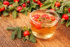 Tea with dog rose Royalty Free Stock Images