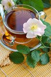 Tea with dog-rose blossom Royalty Free Stock Photos