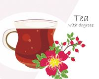 Tea with dogrose Stock Images