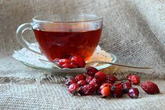 Tea with dogrose Royalty Free Stock Photo