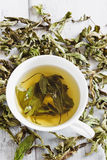 Tea from the dried leaves of mint Stock Photography