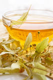 Tea from dry lime-tree flower Royalty Free Stock Image