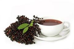 Tea elder Stock Photography