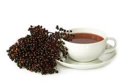Tea elder Royalty Free Stock Image