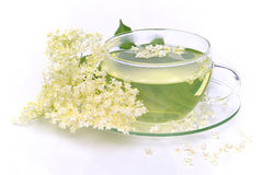 Tea elder flower Stock Photo