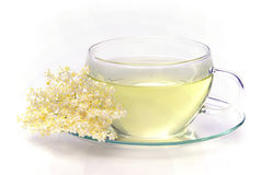 Tea elder flower royalty free stock photo