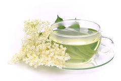 Tea elder flower Royalty Free Stock Photos
